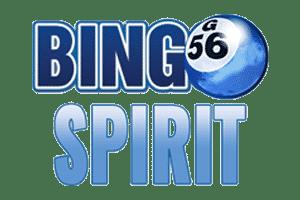 Spel bingo - 71783