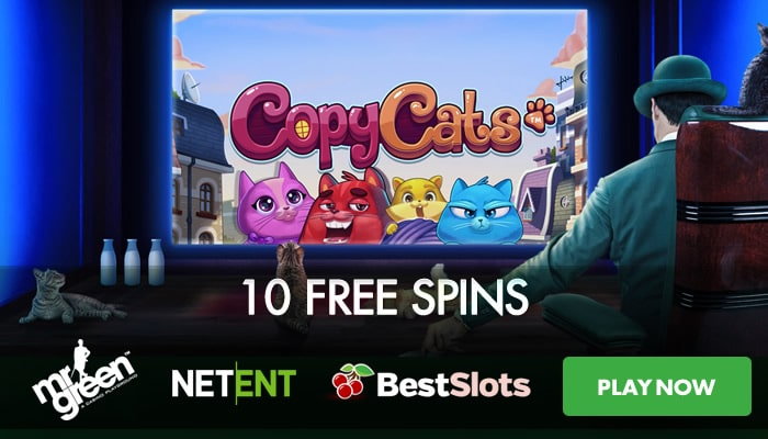 Free spins festival - 50079