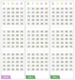 Spelguide för bingo - 64904