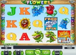 Vilka casino - 53812